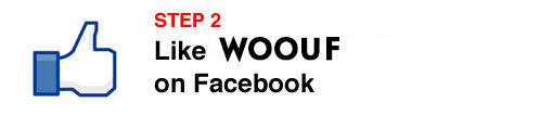 WOOUF-step2