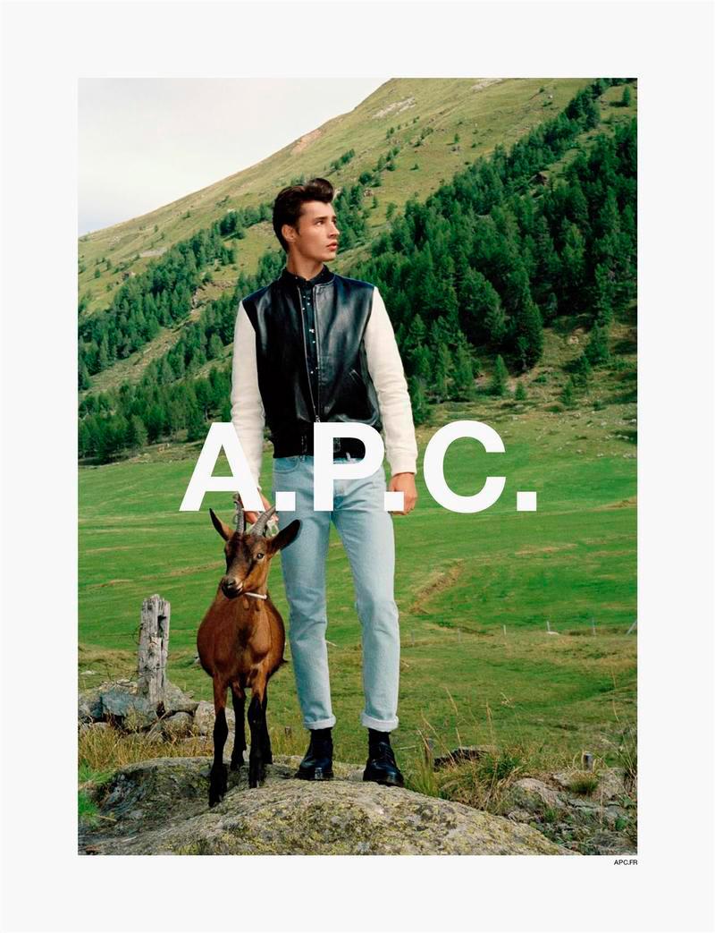 apc_ss14_campaign_fy1