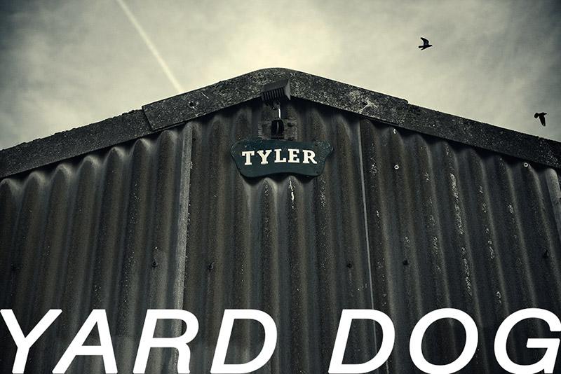 yarddog_fy0