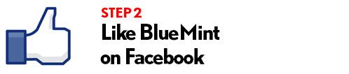 bluemintgiveaway3