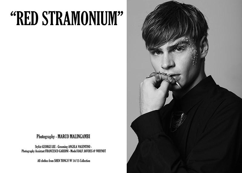 Red-Stramonium_fy1