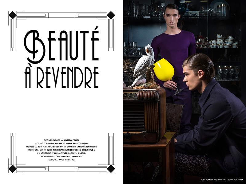 beaute-a-Revendre_fy1