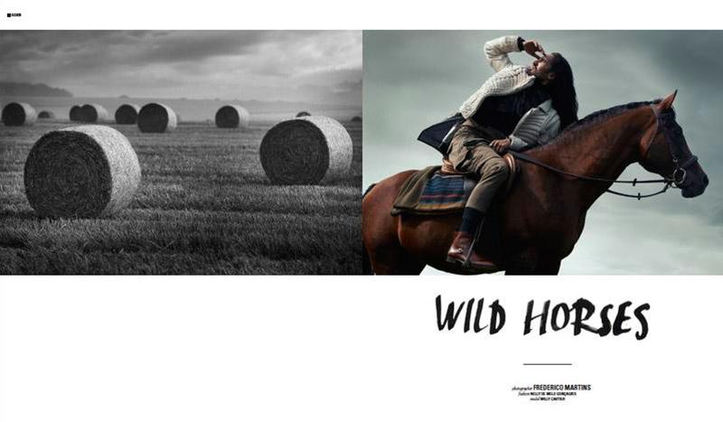 Wild-Horses_fy1