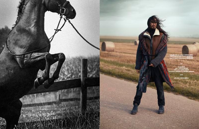 Wild-Horses_fy8