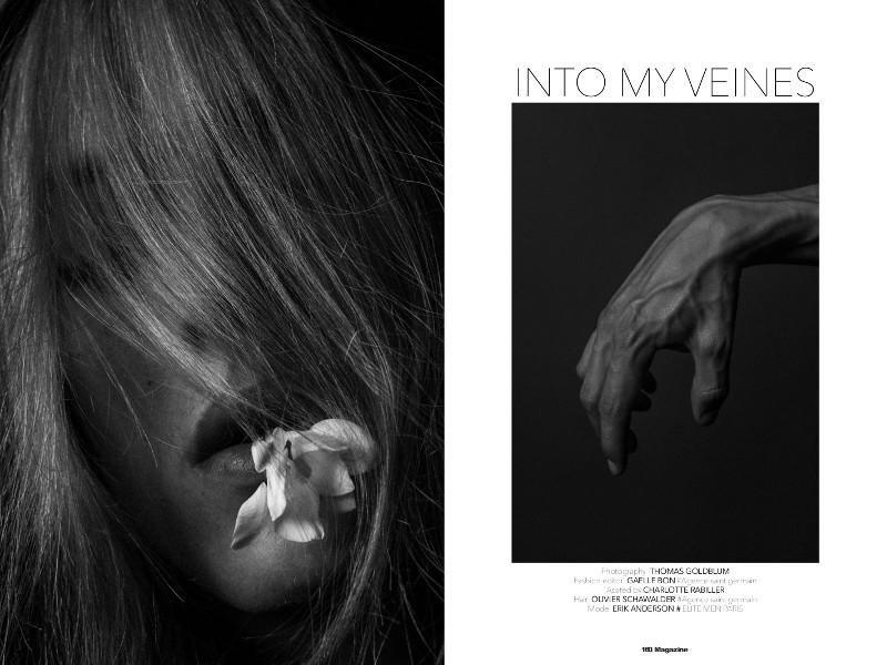 Into-My-Veins_fy1