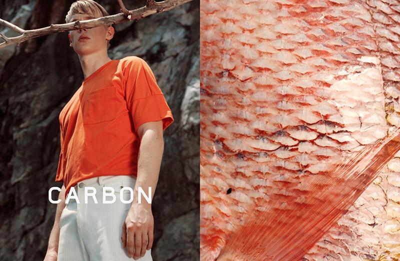 Carbon-FW15-Campaign_fy5