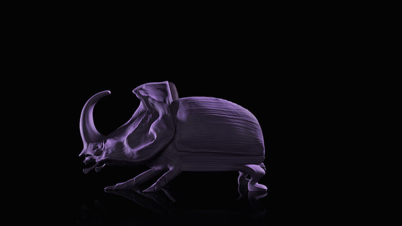 Animal-Chair-Collection_fy12