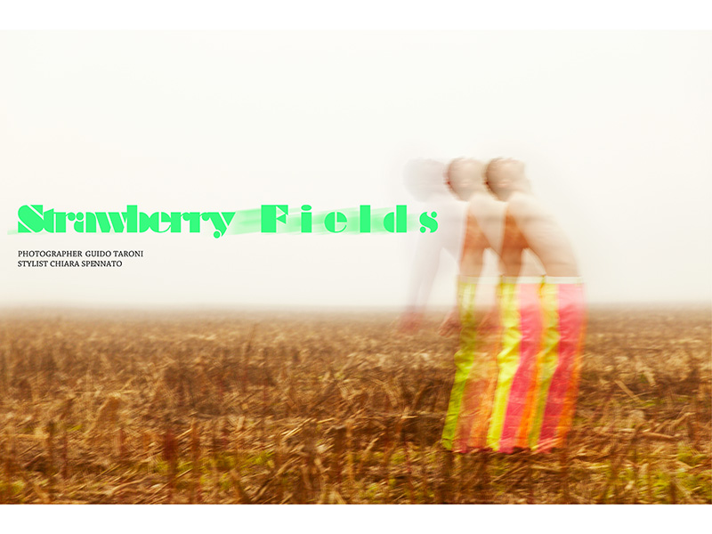 Strawberry-Fields_fy1