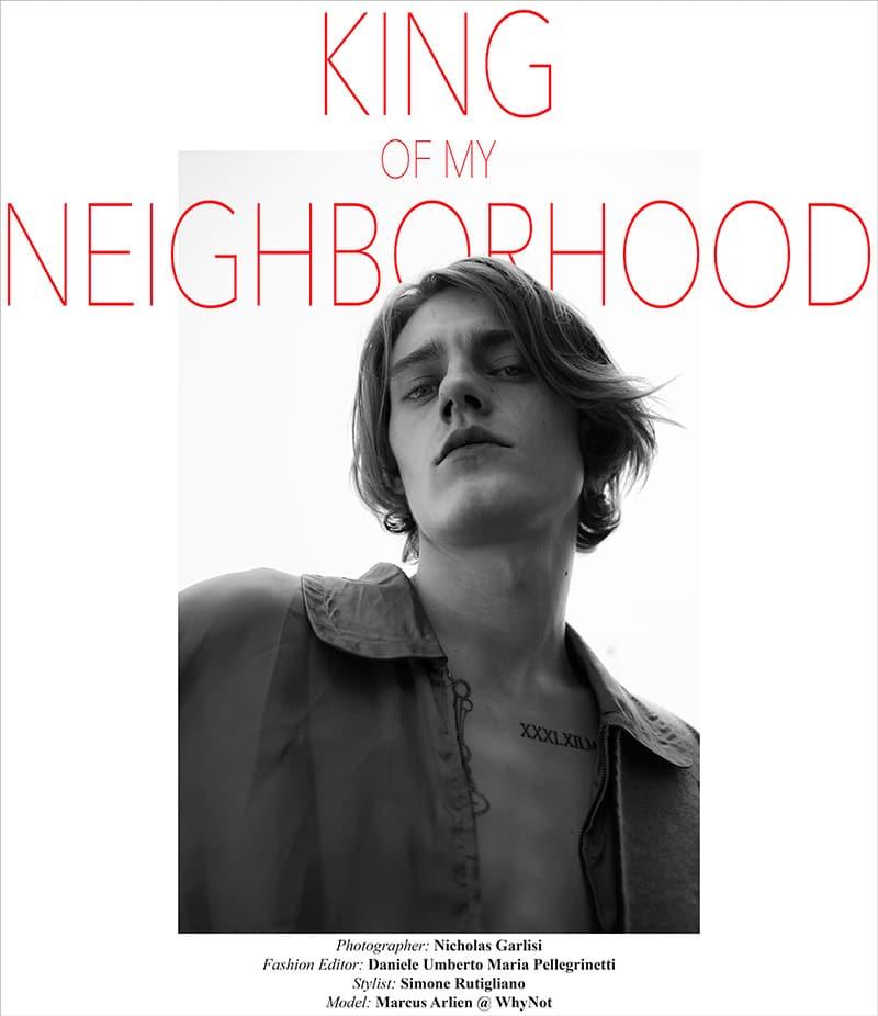 King-of-my-Neighborhood_fy1